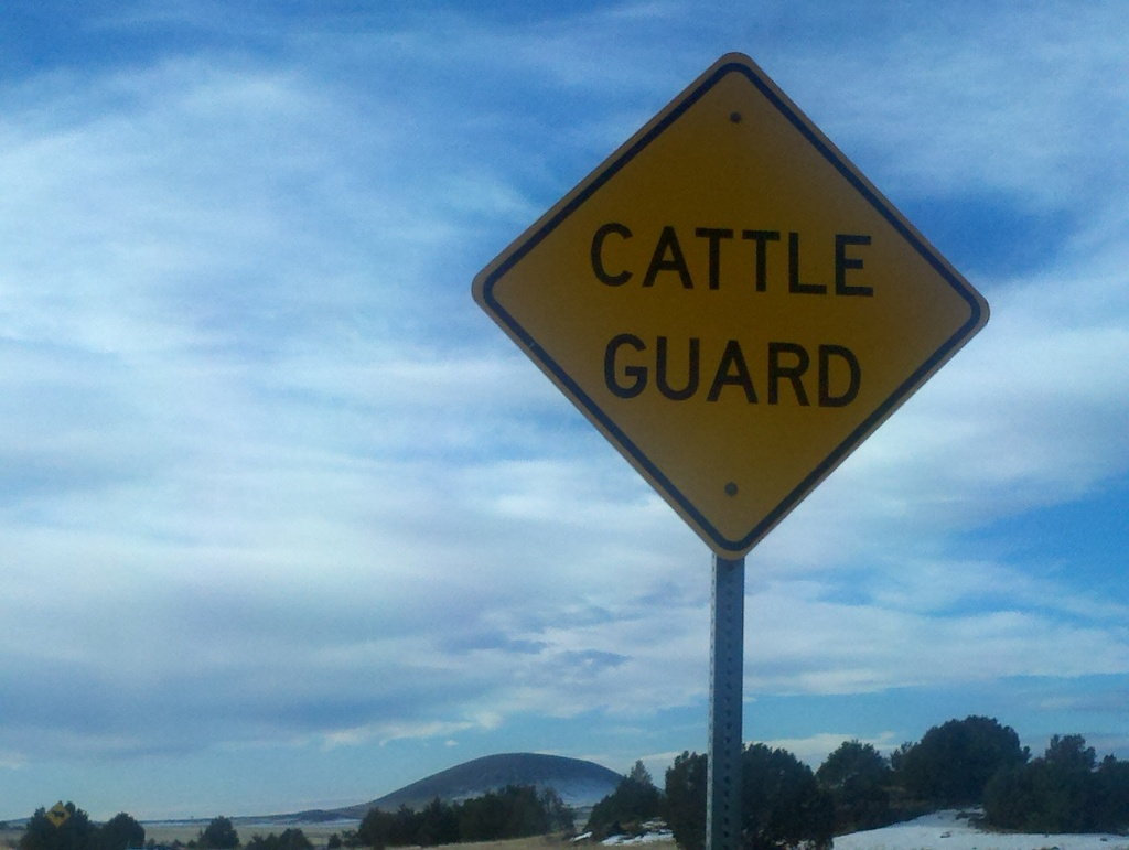 Cattle Guard Sign
