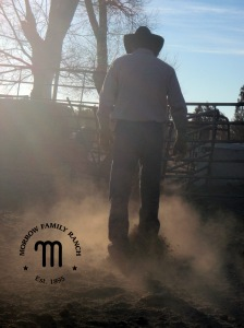 Cowboy and dust