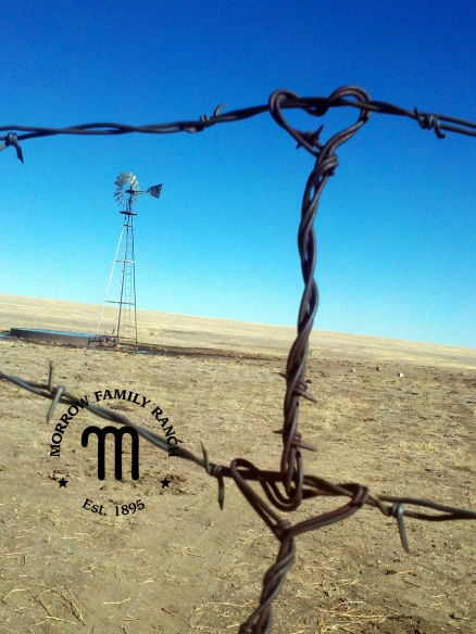 MFR heart barbed wire fence
